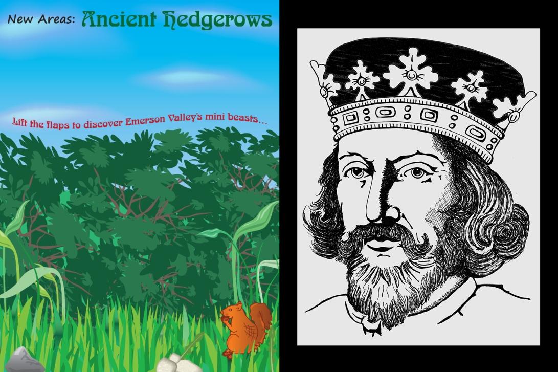 hedge-king-john-drawings